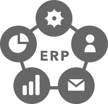 業務システム/ERP